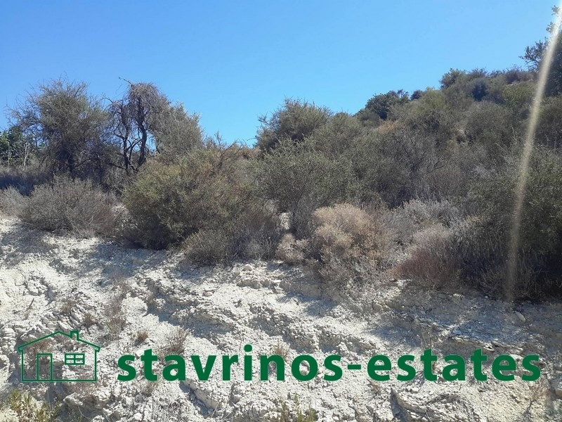 (For Sale) Land Agricultural Estate || Larnaka/Skarinou - 8.100 Sq.m, 50.000€